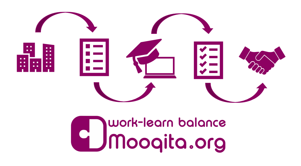 The Mooqita tasks process in brief.
